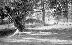 Landscape 1985 9