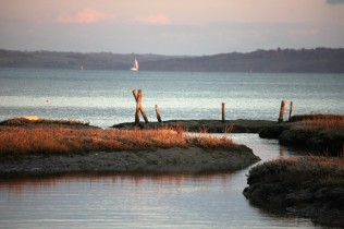 Rock pools and Isle of Wight