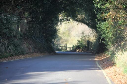 Inchmery Lane