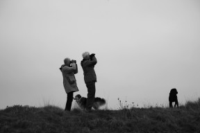 Birders and dogs