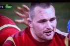 Rugby - Wales v. South Africa