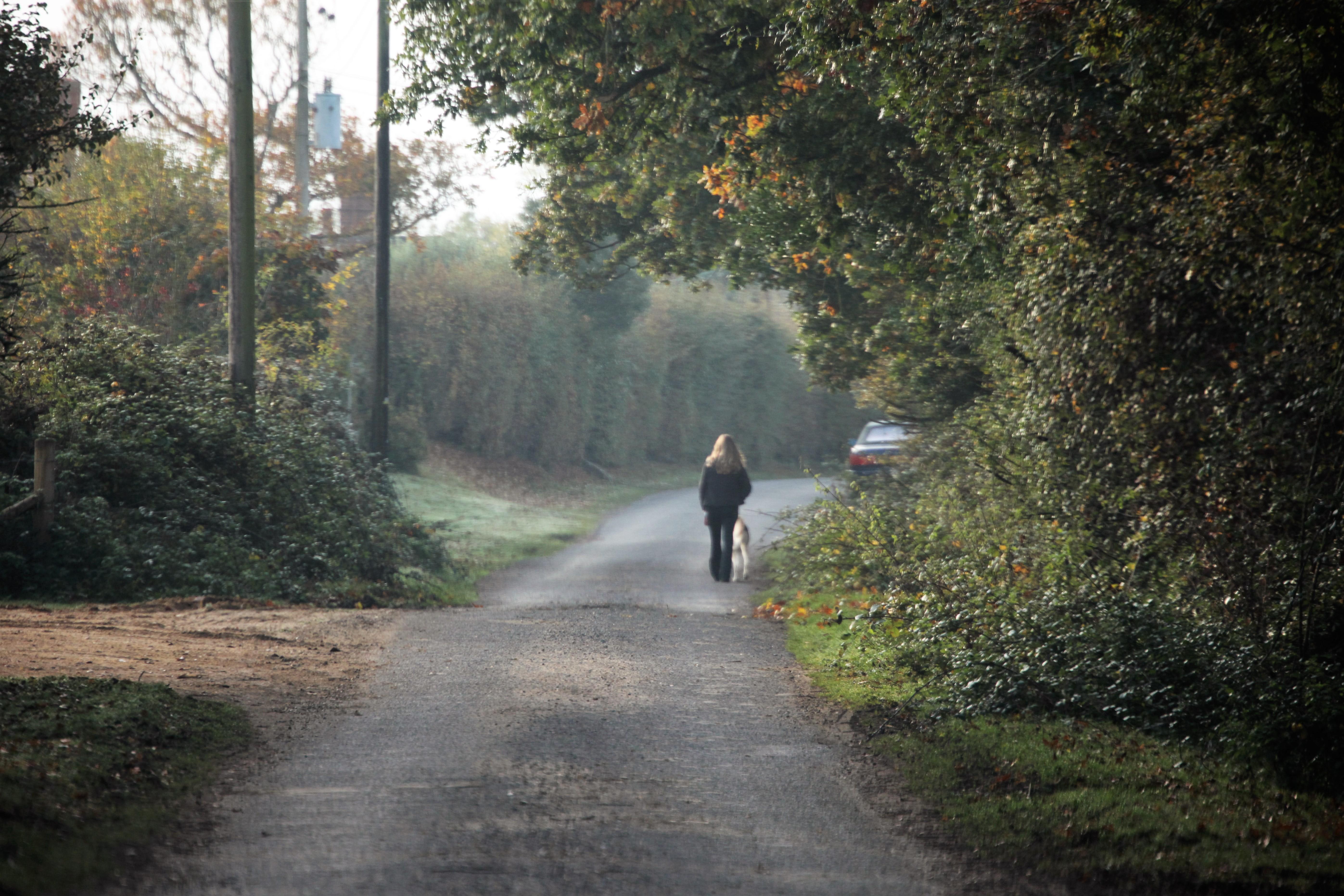 Woman walking saluki