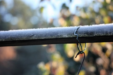 Frost on wooden rail