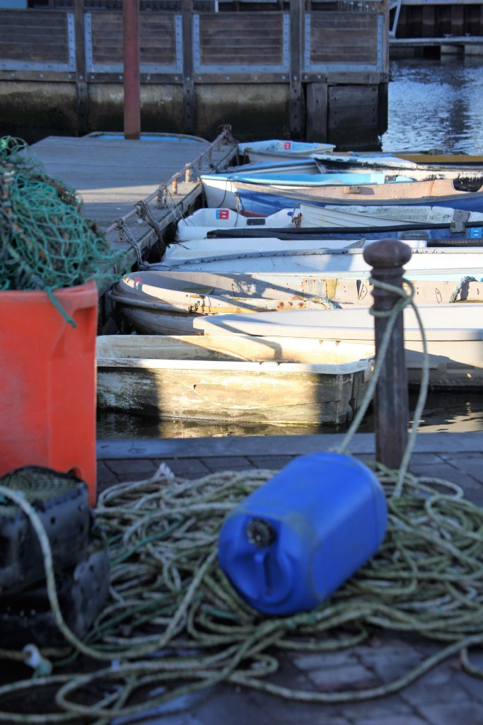 Ropes and boats