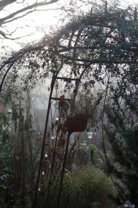 Misty garden 3