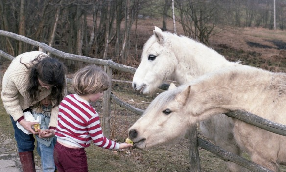 Jessica, Sam and Louisa feeding ponies 1986