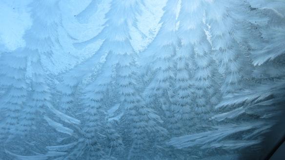 Frost on windscreen 1