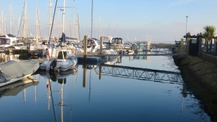 Reflections in Marina