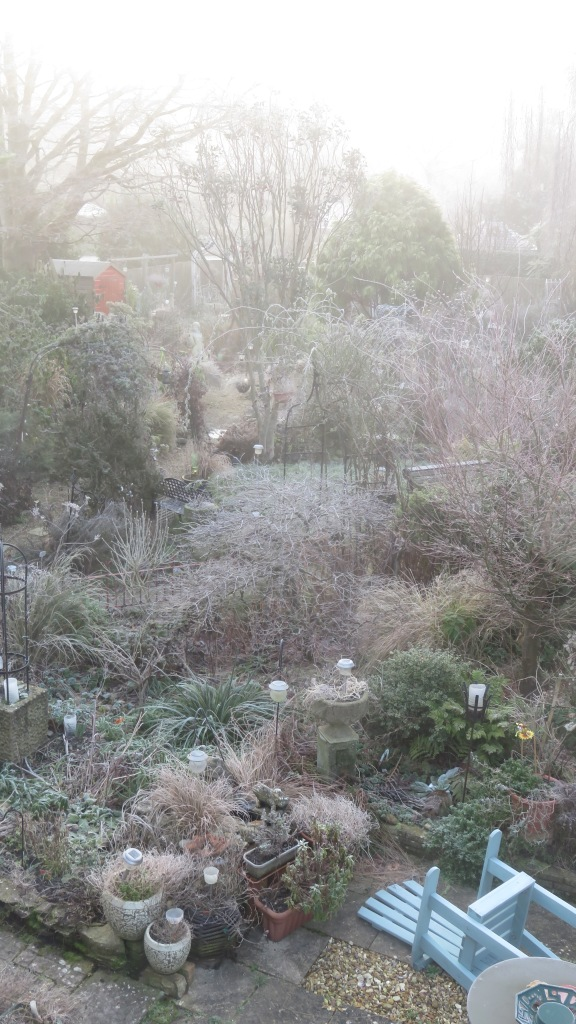Frosted garden 3