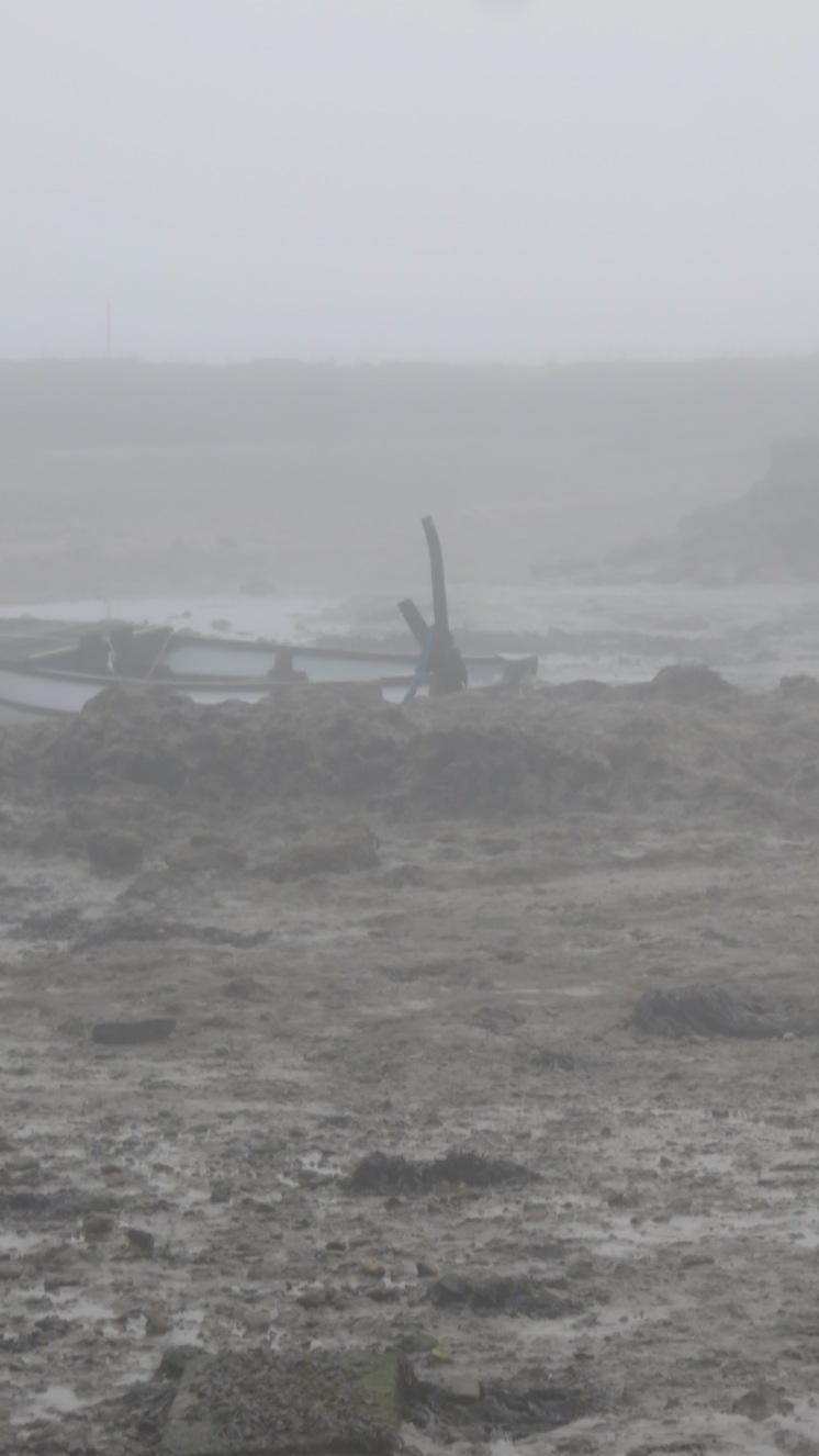 Low tide in fog 6