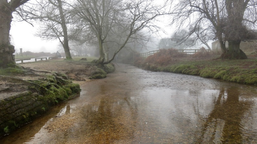 Stream in mist 3