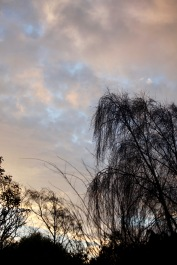 Skies at Dawn 2