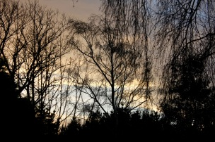 Skies at Dawn 4