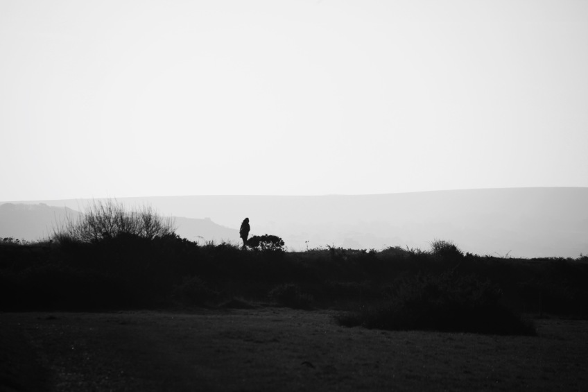 Walker silhouette 1