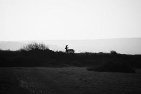 Walker silhouette 2