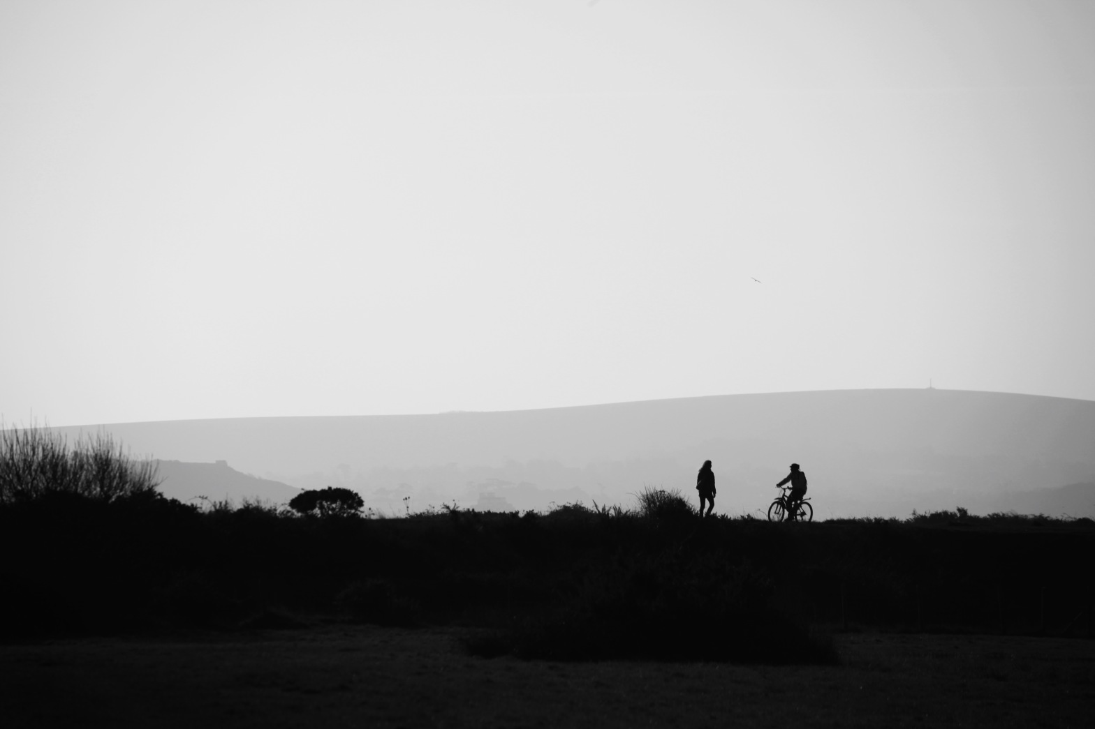 Walker and cyclist silhouette