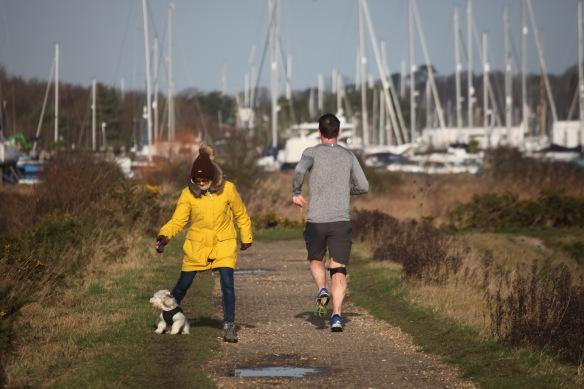 Dog walker and runner