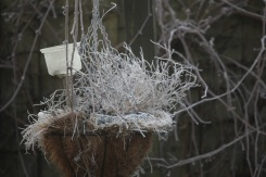Frosted hanging basket