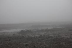 Low tide in fog 1
