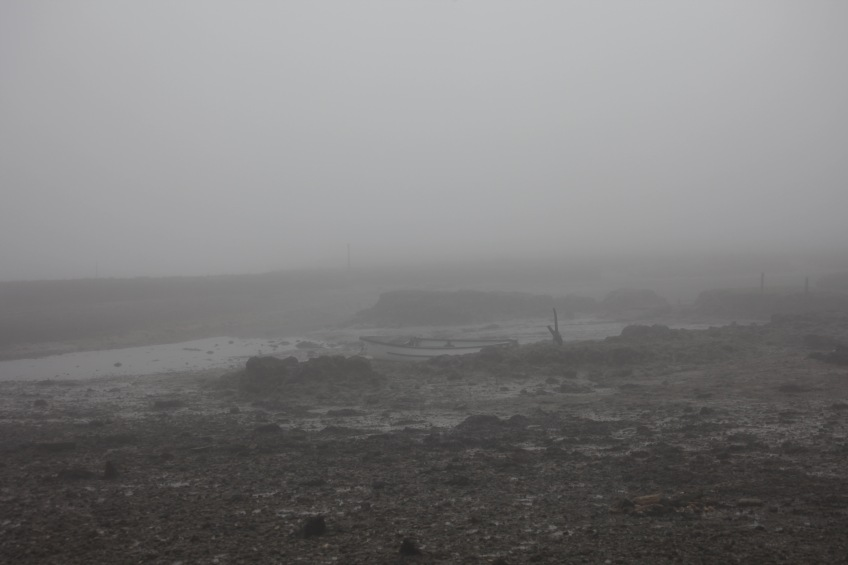 Low tide in fog 1