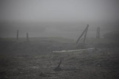 Low tide in fog 4