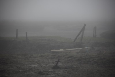 Low tide in fog 4