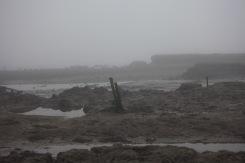 Low tide in fog 5