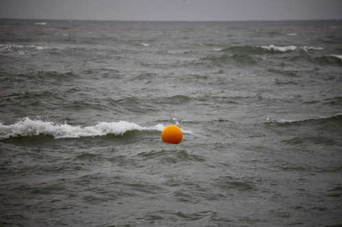 Waves and buoy 2