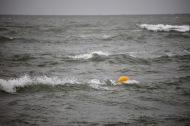 Waves and buoy 3