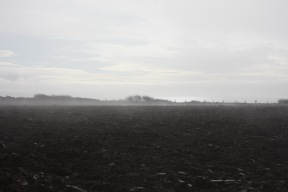 Misty horizon 1