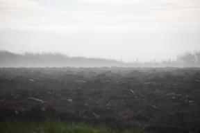 Misty horizon 2