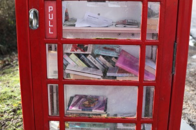 Telephone Box book exchange 2