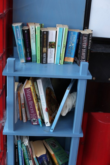 Telephone Box book exchange 7