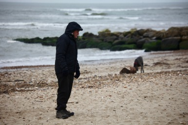 Man and dogs on beach 1