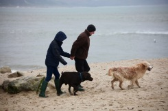 Couple and dogs on beach 1