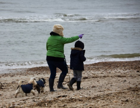 Woman, boy, and dogs on beach