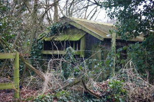 Derelict shed 1