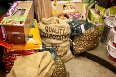 Seed potatoes etc.