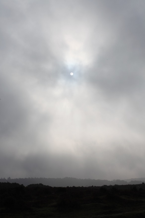 Misty landscape with sun