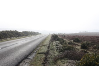 Landscape in mist with jogger