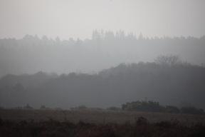 Landscape in mist 4