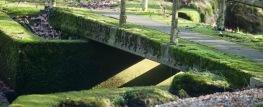 Bridge over stream 3