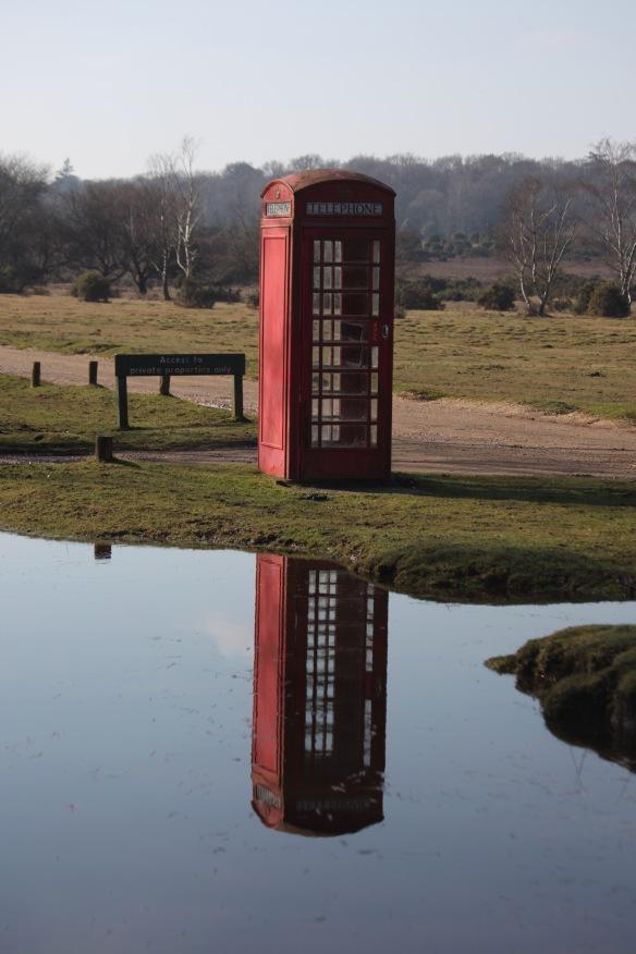 Telephone box reflected