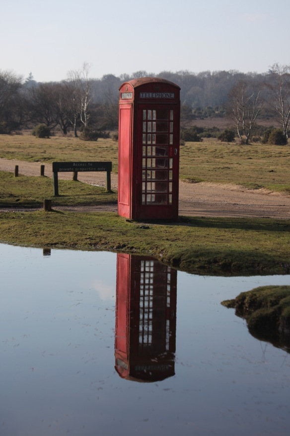 Telephone box reflected