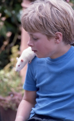 Sam and Ratty 3