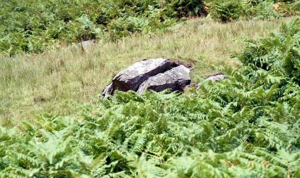 Granite boulder on Place Fell 18.8.92