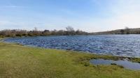 Whitton Pond 1