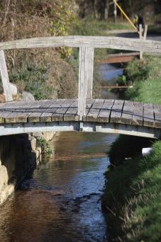 Bridges over stream 2
