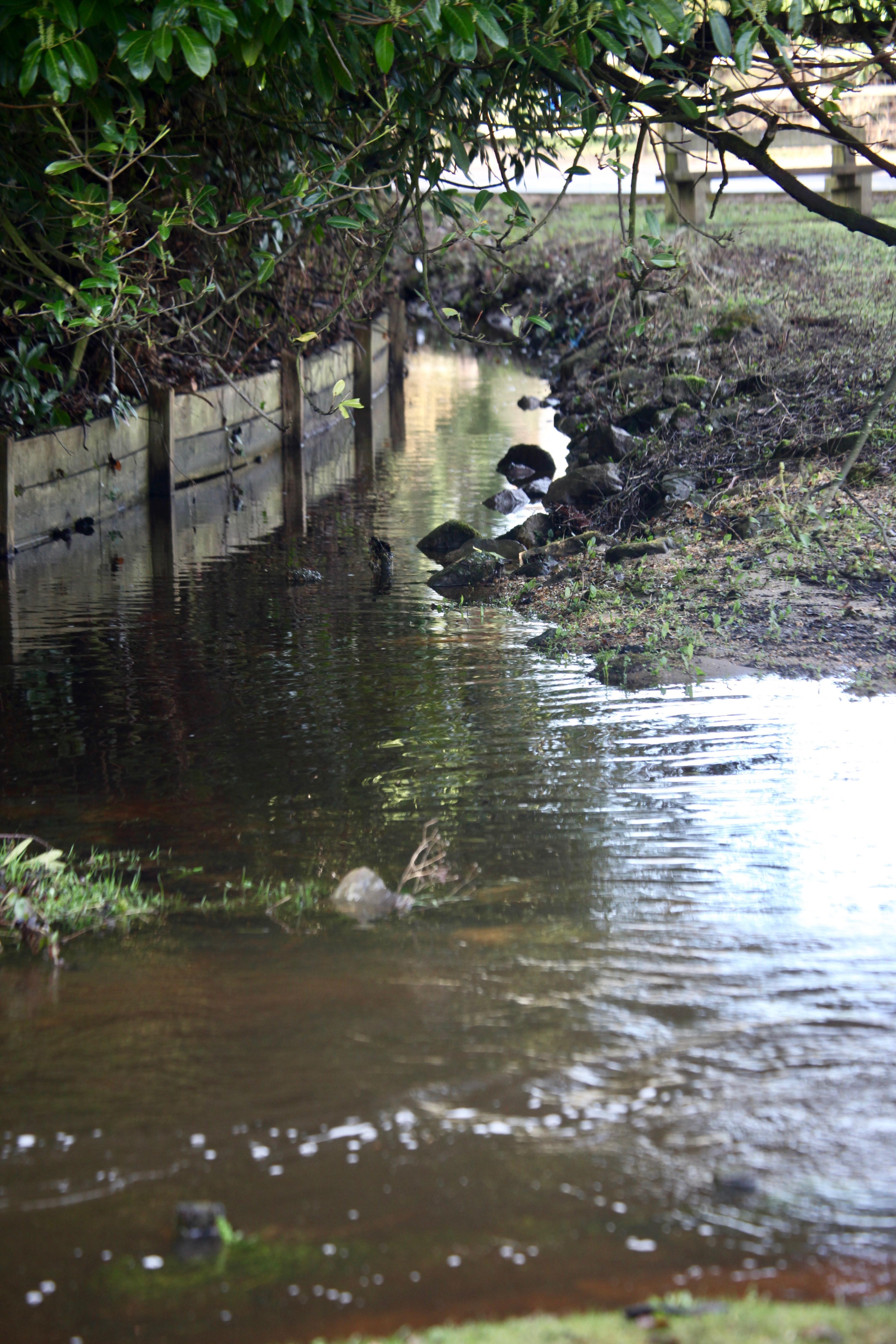 Flooded verge