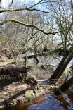 Highland Water 2